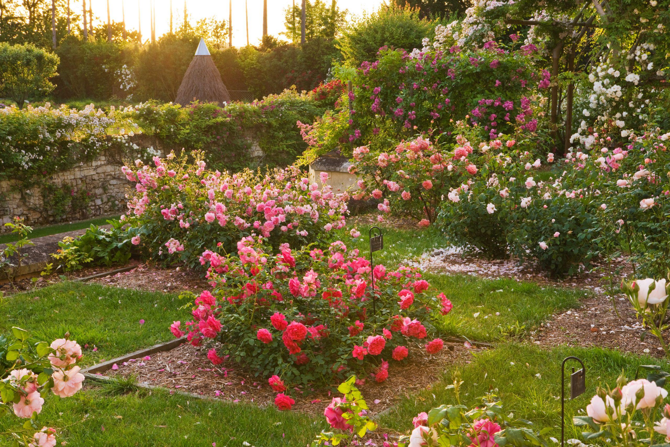 Jardins secret au Rivau